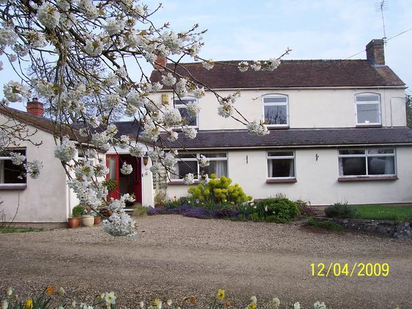 Housesitting assignment in Westbury on Severn, United Kingdom