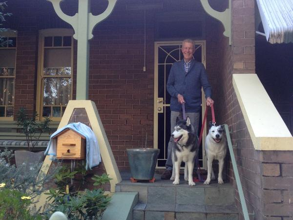 Housesitting assignment in Paramatta, New South Wales, Australia