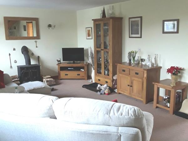 Caring Housesitter Needed for March