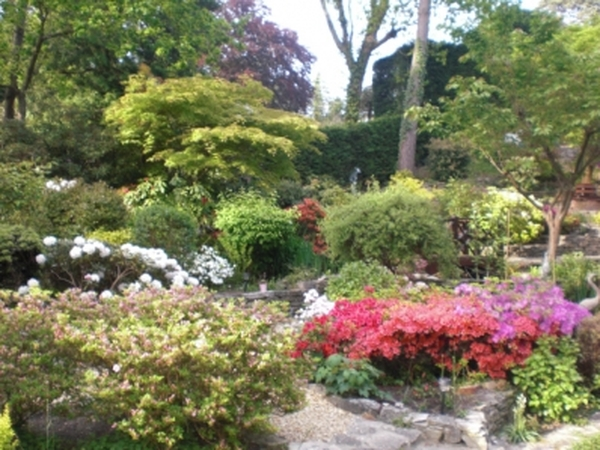 House/Petsitter Canford Cliffs Poole 7days 19th-26th October