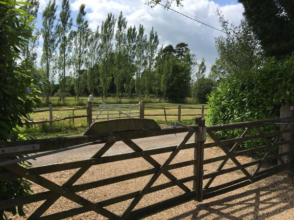 House sitting couple required 10 minutes from Uckfield, East Sussex