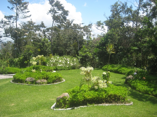 HOUSE/CAT SIT IN COSTA RICA - House sitter now found