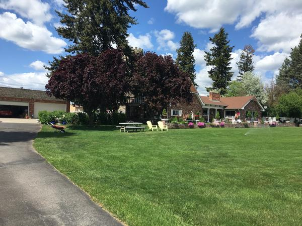 Housesitting assignment in Otis Orchards-East Farms, Washington, United States