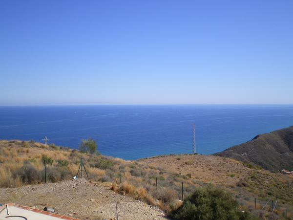 Housesitting assignment in Mojacar, Spain