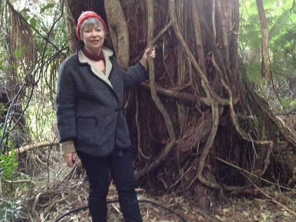 Liz from Motueka, New Zealand