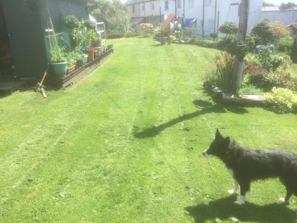 Housesitting assignment in Carradale, United Kingdom