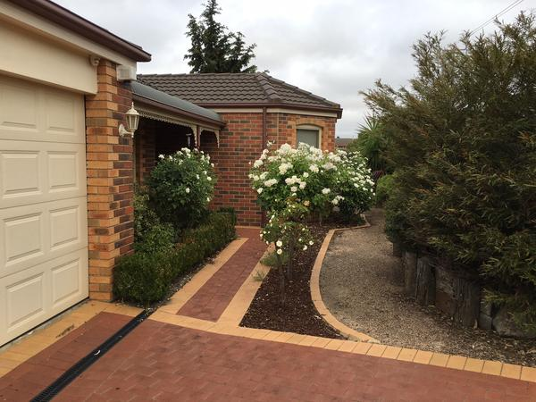Housesitting assignment in Sunbury, Victoria, Australia