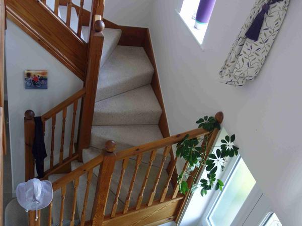 Housesitting assignment in Penyffordd, United Kingdom