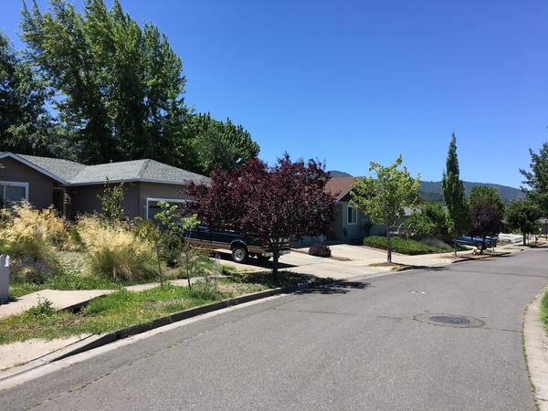 Housesitting assignment in Ashland, OR, United States