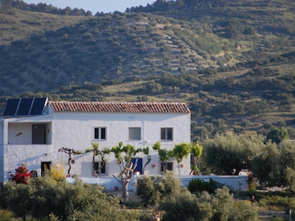 Rural andalucian cortijo with pool our dog Rossi and cat Chi