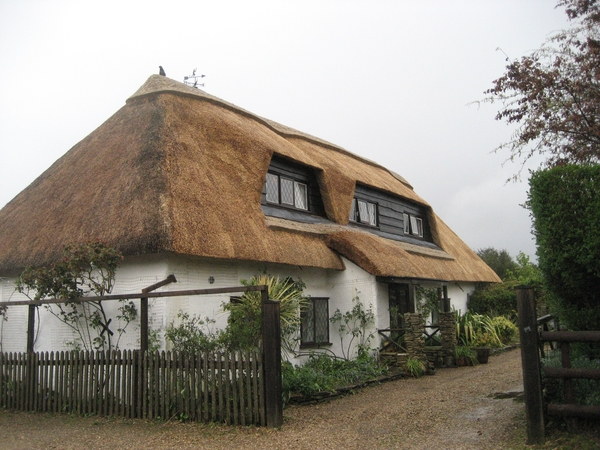 Sitter needed for dog in Cobweb Cottage - New Forest