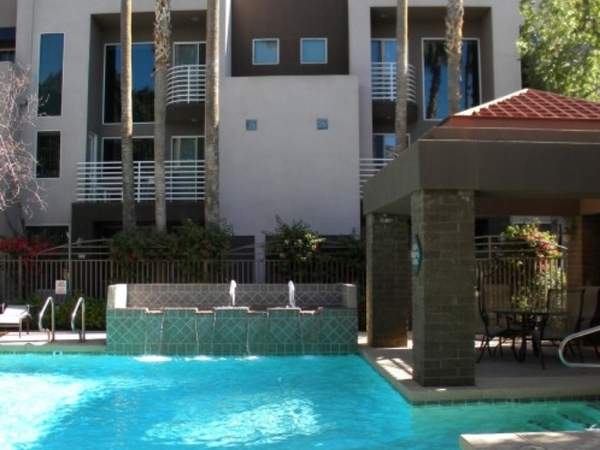 Condo near downtown Phoenix with 2 dogs
