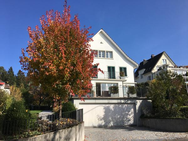 Housesitting assignment in Zürich, Switzerland