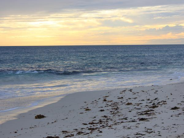 Housesitting assignment in Quinns Rocks, Western Australia, Australia
