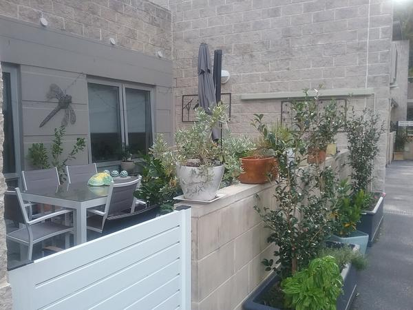 Housesitting assignment in Bay View, NSW, Australia