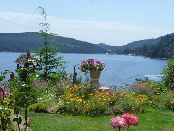 Housesitting assignment in Maple Bay, British Columbia, Canada