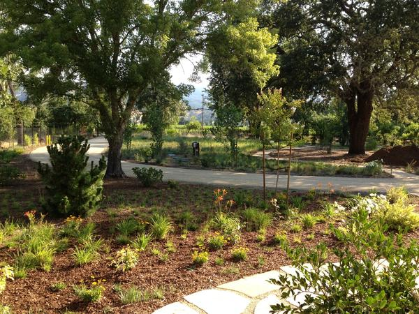 Housesitting assignment in Calistoga, California, United States