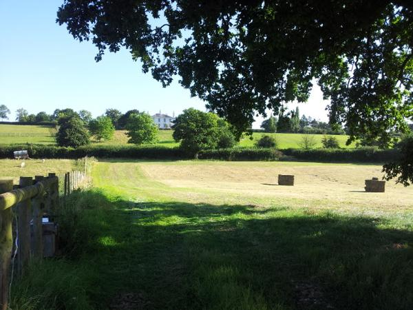 Country house, open fires, comfortable with glorious rural location close to The Forest of Dean.