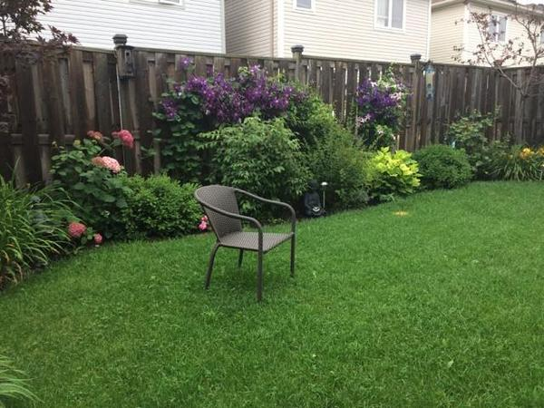 Housesitting assignment in Whitby, ON, Canada