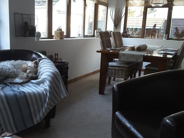 Housesitting assignment in Bournemouth, United Kingdom