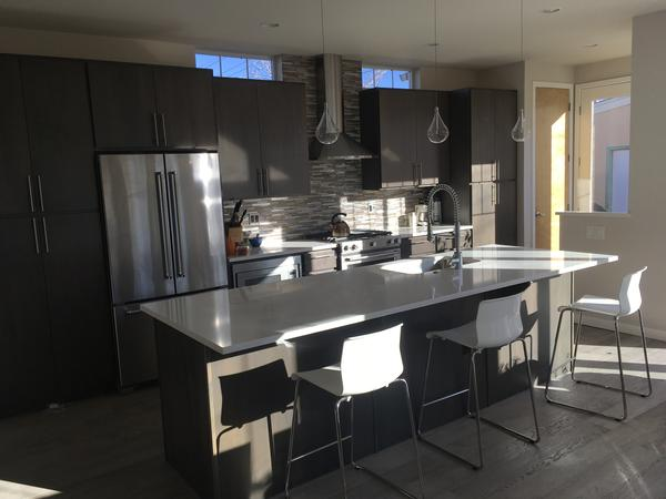 Keep our dog and cat company in our modern home in Denver!
