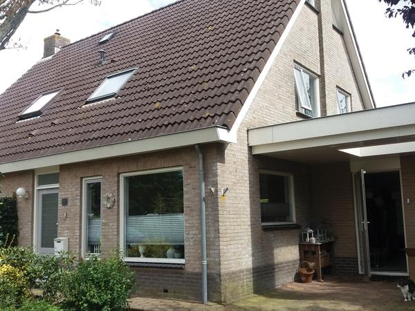 Housesitting assignment in Joure, Netherlands