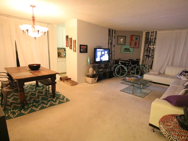 Beautiful apartment 5 blocks from the beach with 1 cuddly cat!