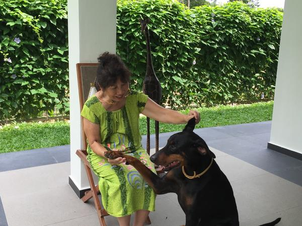 House- and dogsitting for free in luxury home in golfcourse in Malacca, Malaysia