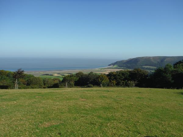 Pet sitter urgently needed for 1 month on beautiful Exmoor