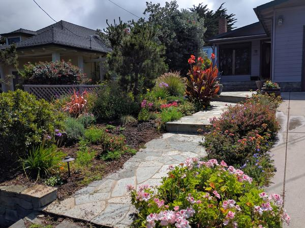 Housesitting assignment in Montara, California, United States
