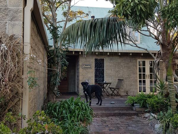 Housesitting assignment in Old Bar, New South Wales, Australia