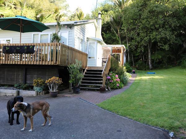 Housesitting assignment in Waimauku, New Zealand