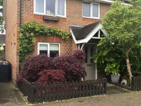 Housesitting assignment in Hildenborough, United Kingdom