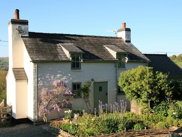 Country Loving House/Pet Sitter required near Hay on Wye/Builth Wells in Mid Wales