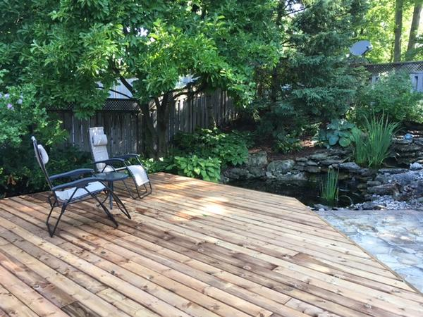 Housesitting assignment in London, ON, Canada