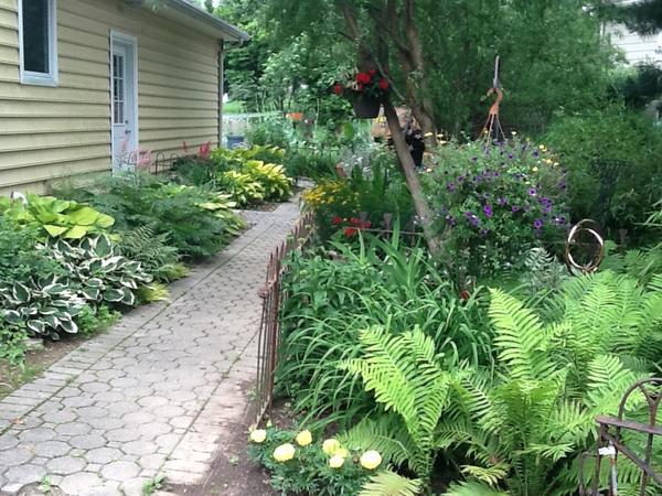 Housesitting assignment in Newark, Delaware, United States