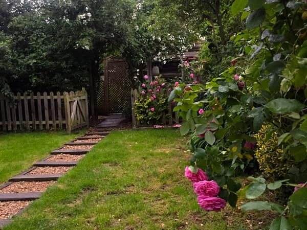 WANTED - House Sitter Wanted from 31st July - 8th August 2017, North London