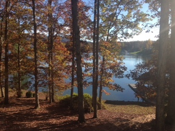 Pet and house sitter for lake front home on Smith Mountain Lake