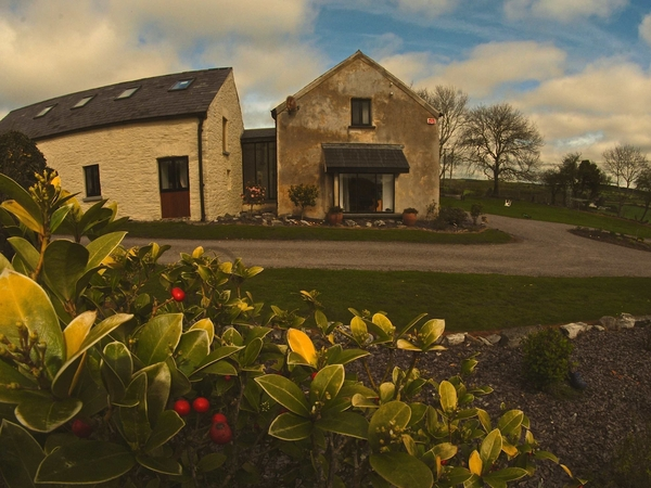 Trusted house sitter wanted in Cork, Ireland