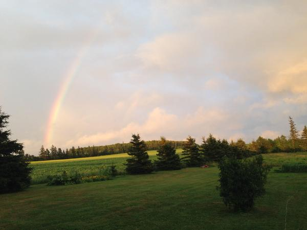 Housesitting assignment in Emerald Junction, Prince Edward Island, Canada