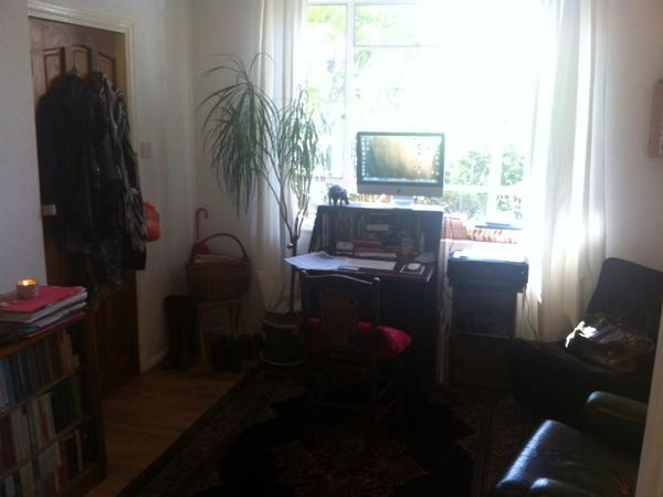 Single sitter for lovely cat and cosy flat in Bethnal Green