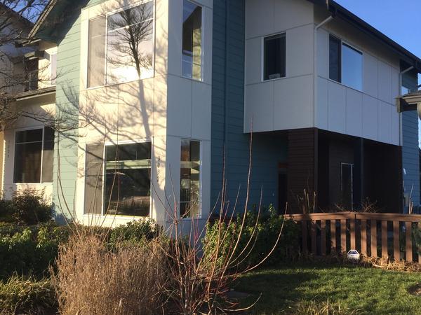 Seattle Housesitter needed in September