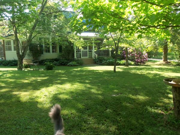 Housesitting assignment in McMinnville, TN, United States