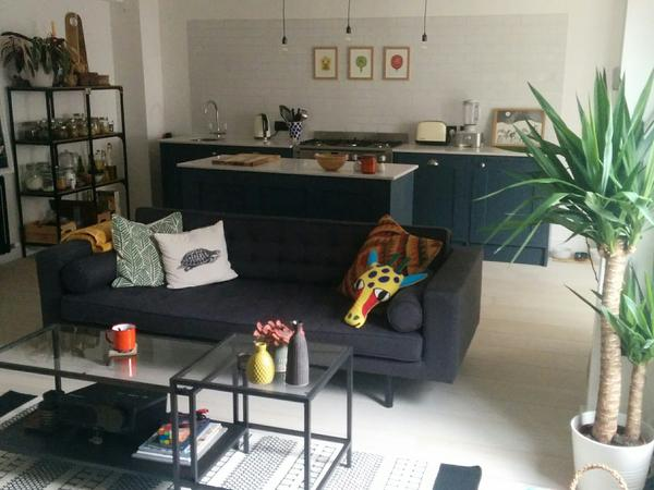 House with cute cat in quiet location near central London