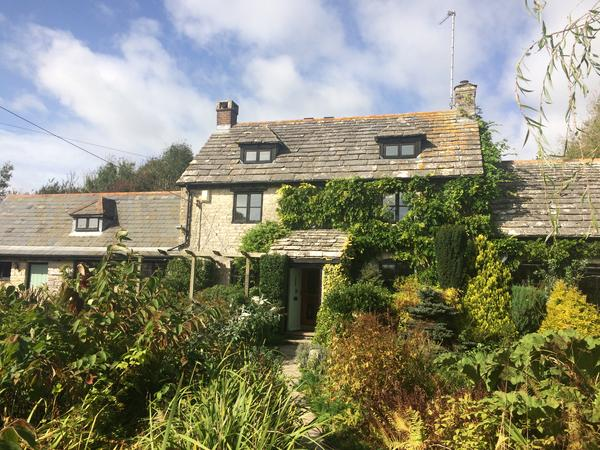 House sitting with pets in Corfe Castle, UK