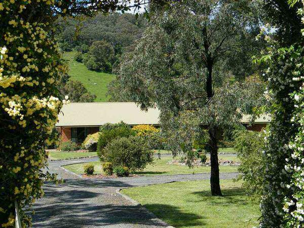 Housesitting assignment in Willow Tree, New South Wales, Australia