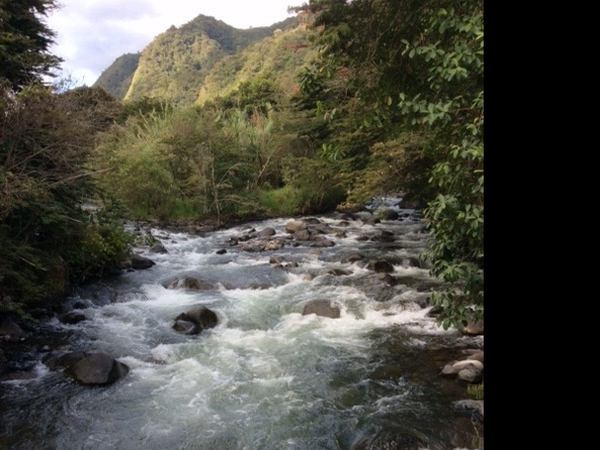 Housesitting assignment in Apuela, Ecuador