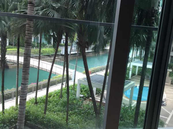 Housesitting assignment in Bukit Merah Estate, Singapore