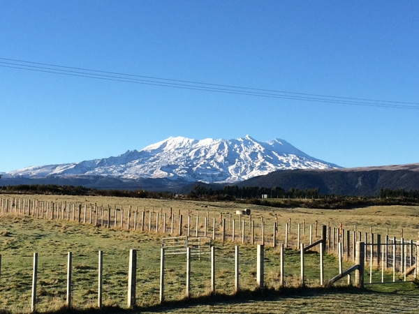 House and Farm in Tongariro National Park,