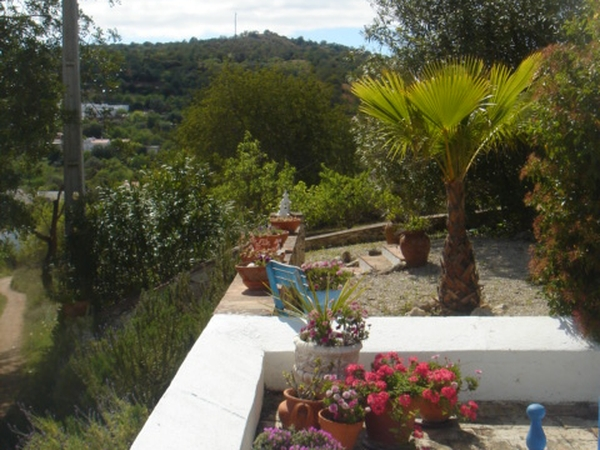 Pet and house sitters in rural Portuguese village
